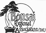 Bonsai Regional Association (BRAT)