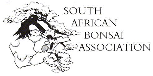 South African Bonsai Association (SABA)